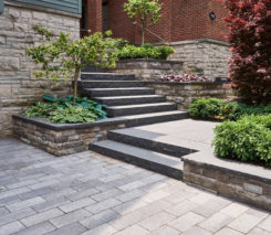 Sander Design Landscape Architecture - Contemporary Front Design - Midtown Toronto