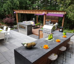 backyard pleasure - Toronto Landscape Design
